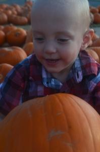 Preemie toddler holding pumpkin
